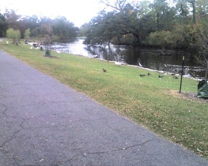 Audubon Park Walking Path