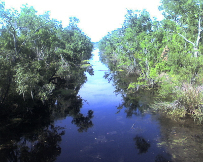 Kenta Canal Trail, Barataria Preserve, Jean Lafitte National Historical Park